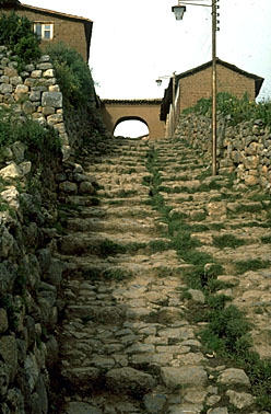 Inca Steps