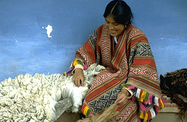 Nilda Holding a Sheep's Fleece